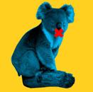 Koala01Logos